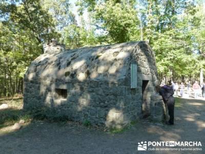 El Castañar de El Tiemblo , Un bosque mágico;senderismo en la sierra de madrid